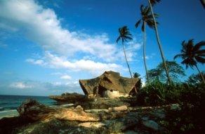 Zanzibarchumbeislandafrica